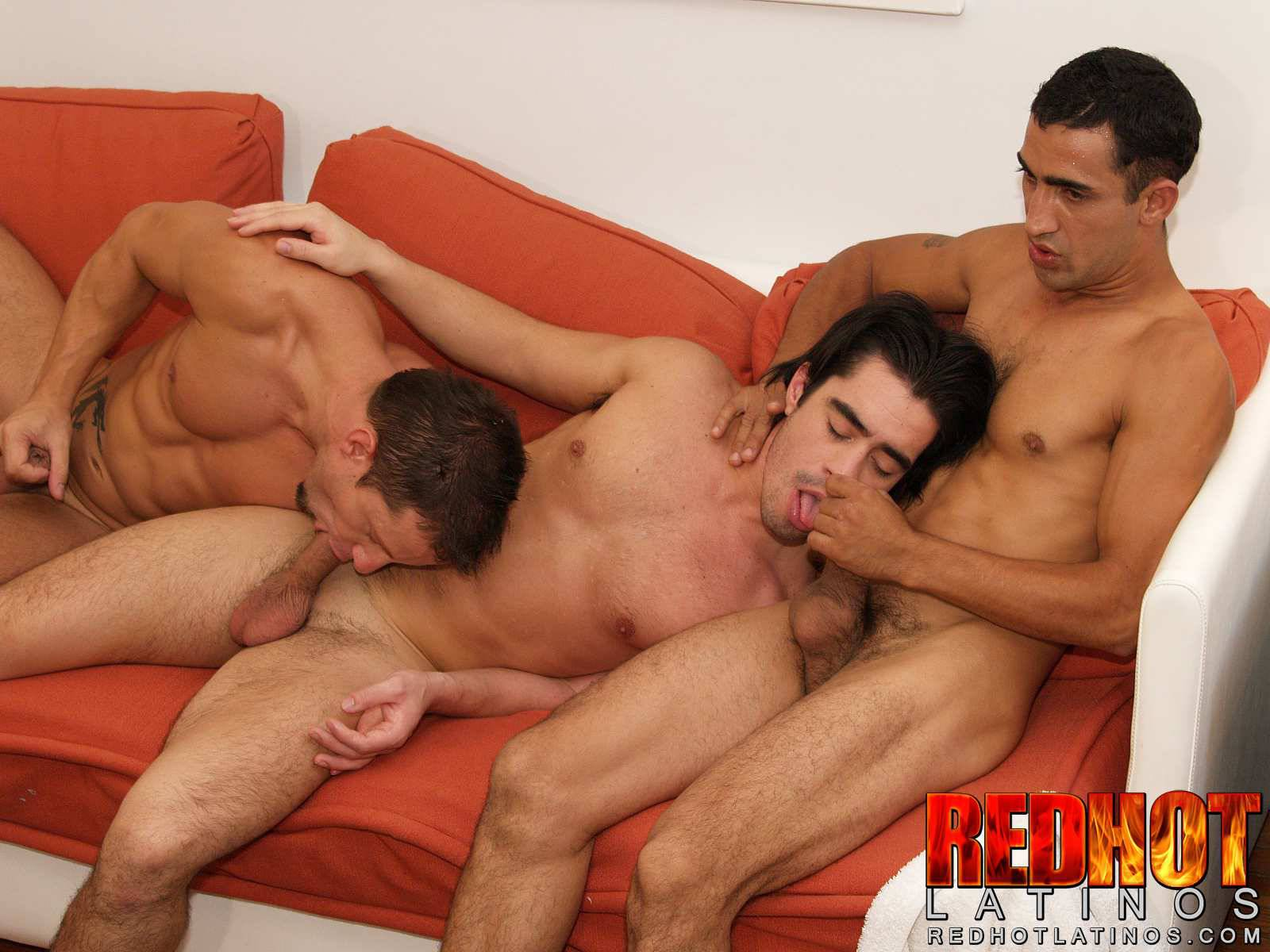 Gay cruising toulouse