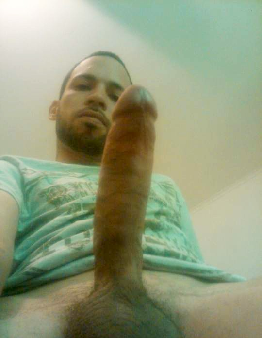 Average Amateur Guys 7